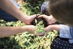 Familie die een nieuwe boom voor de toekomst planten stock foto