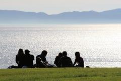 Familie die een picknick heeft. stock fotografie