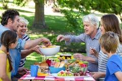 Familie die een picknick heeft Stock Foto's