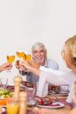 Familie die elkaar roosteren bij Kerstmis Royalty-vrije Stock Foto's