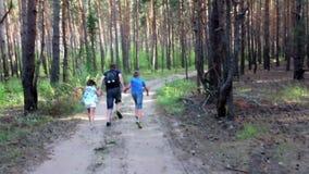 Familie die in het hout loopt stock video