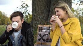 Familie, die im Park picnicking ist Stockbild