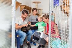 Familie die kat van dierlijke schuilplaats goedkeuren stock foto's