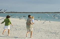 Familie, die läuft, um auf den Strand zu setzen Stockfotos