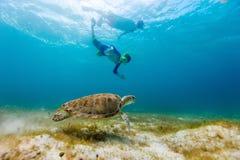 Familie die met zeeschildpad snorkelen royalty-vrije stock afbeeldingen