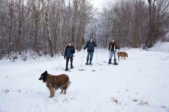 Familie, die mit Hunden snowshoeing ist Lizenzfreie Stockfotos