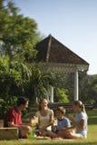 Familie die picknick in park heeft. stock foto's