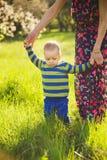 Familie die pret in groene bloeiende de lentetuin hebben op zonsondergangtijd stock fotografie