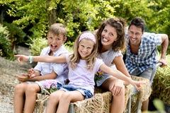 Familie die pret met een kruiwagen in een serre hebben stock foto's