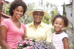 Familie die samen thuis tuiniert Stock Foto's
