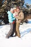 Familie in einem schneebedeckten Park Stockfotos