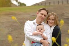 Familie in einer Wiese Stockfotografie