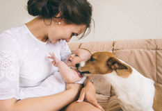 Familie en hond Royalty-vrije Stock Afbeelding
