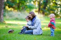 Familie en weinig eekhoorn in park royalty-vrije stock fotografie