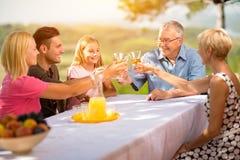 Familie feiern das frohe Lebensstiltrinken des Parteipicknicks stockbilder