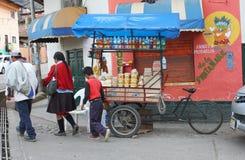 Familie geht mit dem Fahrrad-Lebensmittel-Warenkorb Stockfotografie