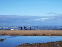 Familie geht mit dem Hund entlang der Küste lizenzfreie stockfotos