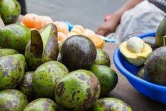 Familie gekweekte Avocado's in Iquitos, Peru Stock Foto