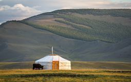 Familie Ger in einer Landschaft von Norther Mongolei lizenzfreie stockfotografie