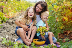 Familie haben Spaß im Traubenweinberg Stockbild