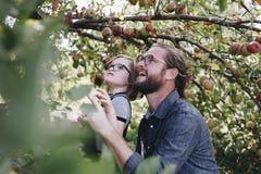 Familie het besteden tijd in landbouwbedrijf stock foto's