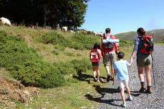 Familie het bewonderen aard en landbouwbedrijfdieren in bergen Royalty-vrije Stock Foto