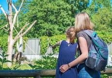 Familie het bezoeken dierentuin Stock Foto's