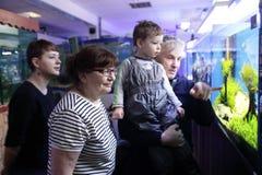 Familie het letten op vissen royalty-vrije stock foto