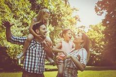 Familie het spelen in de weide samen en kortom van het genieten Royalty-vrije Stock Fotografie