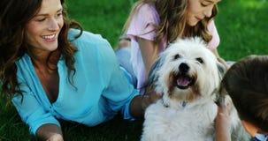 Familie het spelen met hun hond in het park stock footage