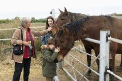 Familie het spelen paarden in een schuilplaats in Rojales, provincie van Alica Stock Afbeelding