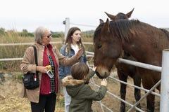 Familie het spelen paarden in een schuilplaats in Rojales, provincie van Alica Stock Afbeeldingen