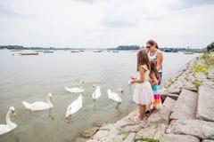 Familie het Voeden Zwanen op Rivier royalty-vrije stock foto