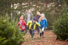 Familie im Freien, die zusammen Weihnachtsbaum wählt Lizenzfreie Stockfotos