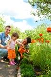 Familie im Garten Stockbilder