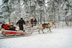 Familie im Ren-Pferdeschlitten im Schnee Forest Rovaniemi Finland Lapland lizenzfreie stockbilder
