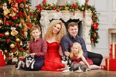 Familie im Rot zusammen mit den heiseren Welpen, die auf Weihnachtsrückseite sitzen Stockfotografie