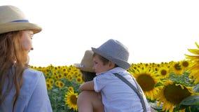 Familie im Sonnenblumenfeld, junge Geschwister in den Strohhüten zusammen auf einem Weg am Sommer draußen stock video