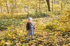 Familie, Kinder und Jahreszeitkonzept - kleines glückliches Kindermädchen, das in den Herbstpark geht lizenzfreie stockfotos