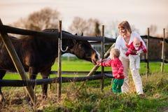 Familie met jonge geitjes die paard voeden Royalty-vrije Stock Afbeelding