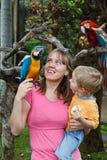 Familie met papegaaien stock afbeeldingen