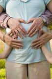 Familie mit den Händen auf schwangerer Mamma Lizenzfreie Stockfotos
