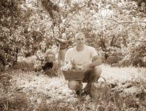 Familie mit geernteten Äpfeln im Garten lizenzfreie stockfotografie