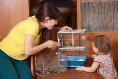 Familie mit Haustieren Lizenzfreie Stockfotos