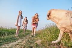Familie mit Hund Stockbilder