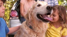 Familie mit Hund im Park stock video