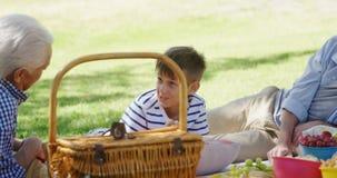 Familie ontspannen het van meerdere generaties in het park stock footage