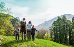 Familie op een groene weide die het bergpanorama bekijkt royalty-vrije stock afbeeldingen