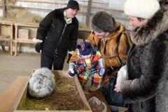 Familie op een konijnlandbouwbedrijf Royalty-vrije Stock Foto