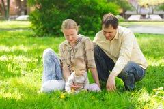 Familie in park Royalty-vrije Stock Foto
